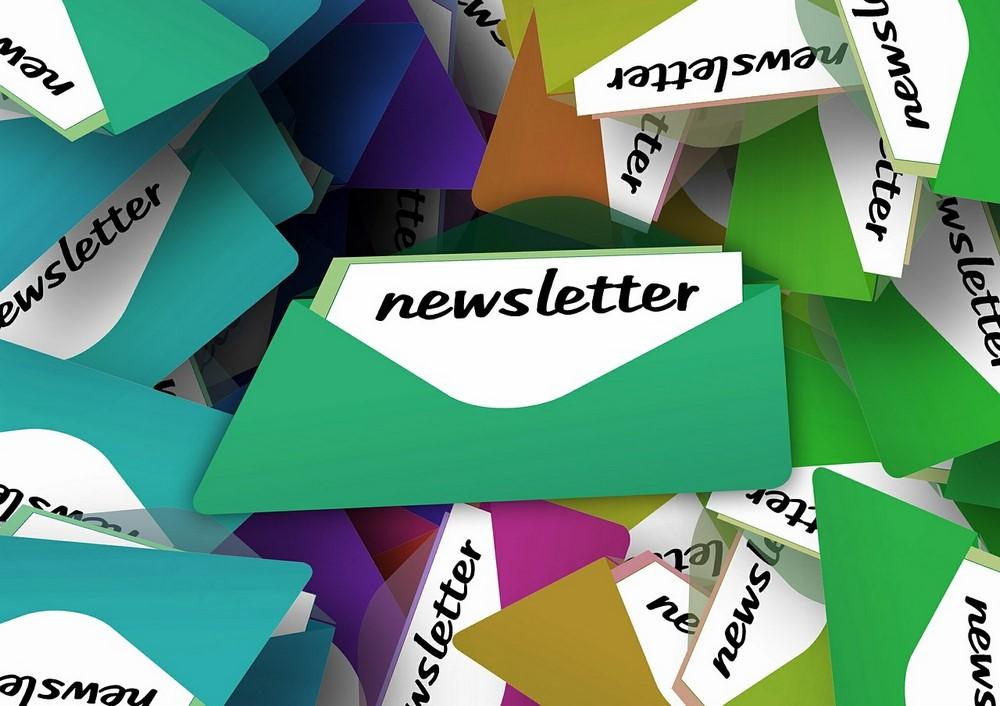 newsletter warto