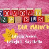 Domowy angielski dla malucha #1 – Say hello